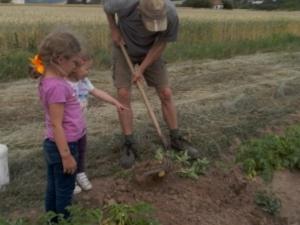 Die erste Ernte des Jahres mit unseren Kindern