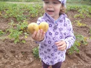 Maja hat die erste Herzkartoffel in diesem Jahr gefunden