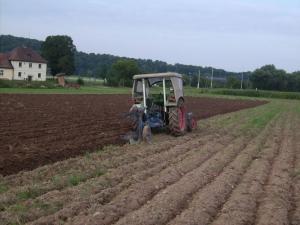 Bodenbearbeitung auf dem Kartoffelacker