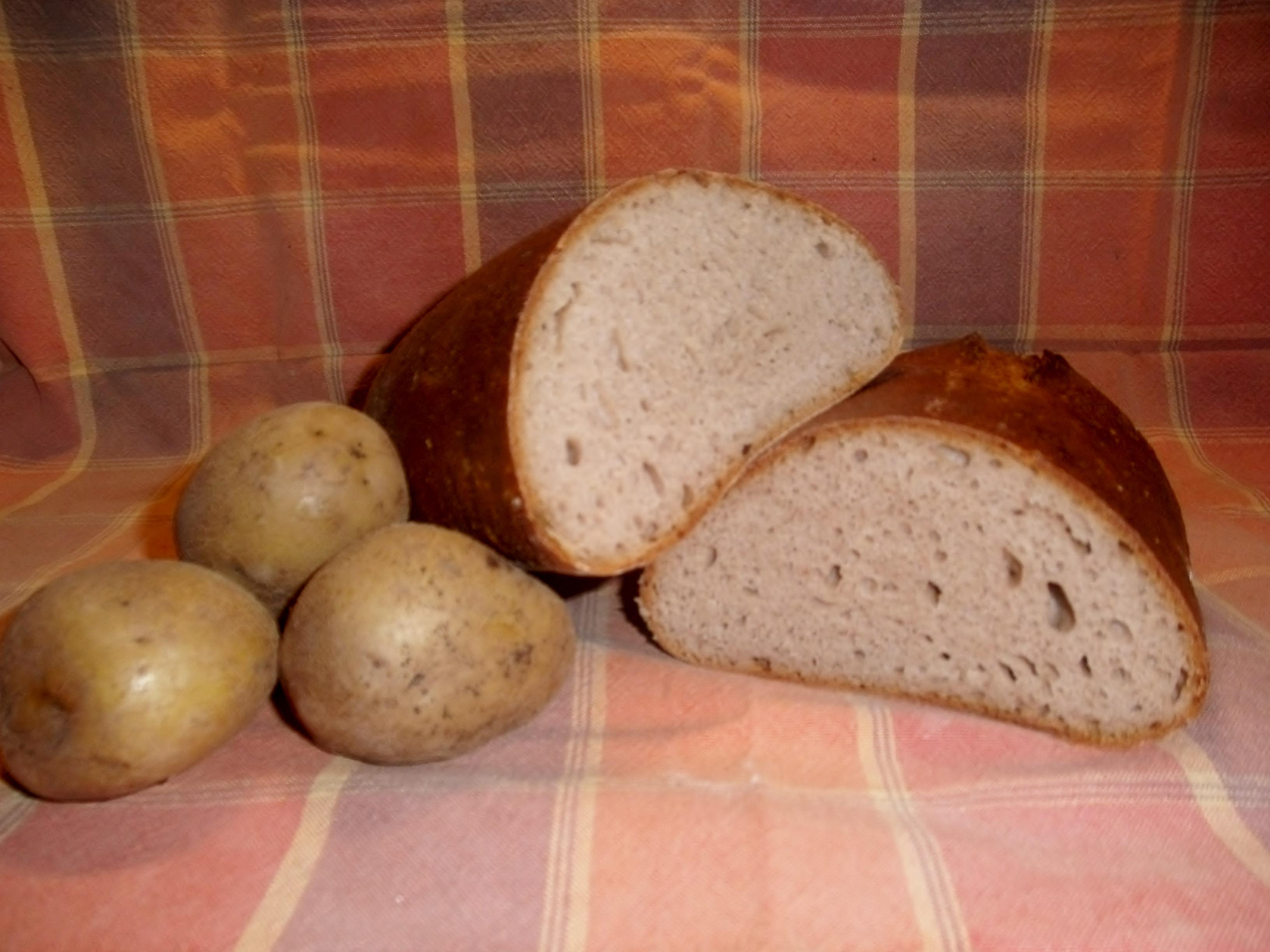 Kartoffelbrot aus hofeigenen Kartoffeln